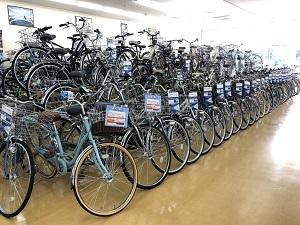 ... 川口 柏 立川の自転車店です